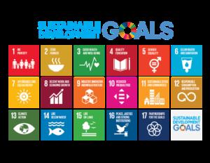 los objetivos de desarrollo sostenible de 2030